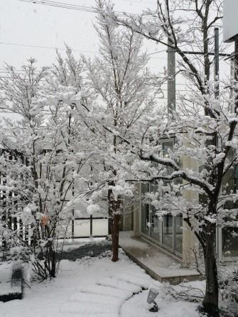 雪景色の庭屋
