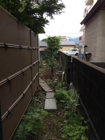 剪定・植栽撤去後の園路
